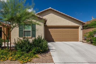 Tucson Single Family Home For Sale: 9584 S Trapper Ridge Drive