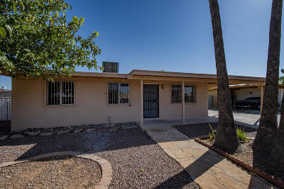 Tucson Single Family Home For Sale: 4745 S Calle De La Faena