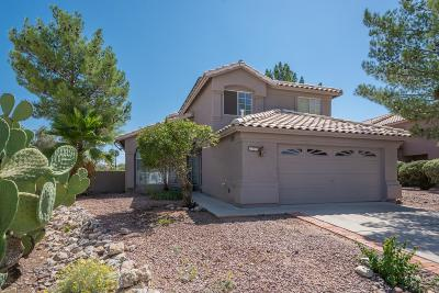 Tucson Single Family Home For Sale: 245 S London Station Road