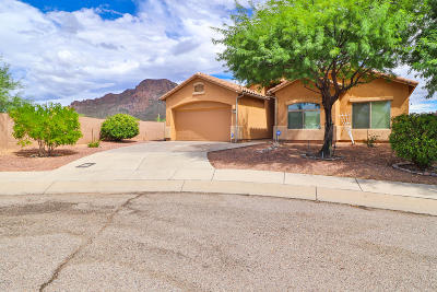 Tucson Single Family Home For Sale: 3915 S Rocky Peak Court
