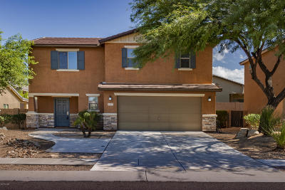 Tucson Single Family Home For Sale: 4812 W Lessing Lane