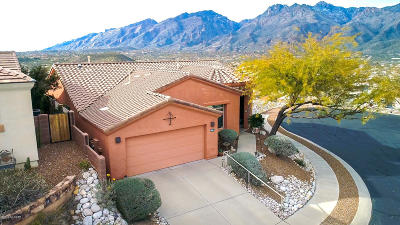 Tucson Single Family Home Active Contingent: 4669 N Black Rock Place