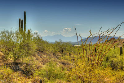 Tucson Residential Lots & Land For Sale: 3635 W Placita De La Tierra