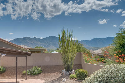 Tucson Single Family Home For Sale: 65745 E Rocky Terrace Drive