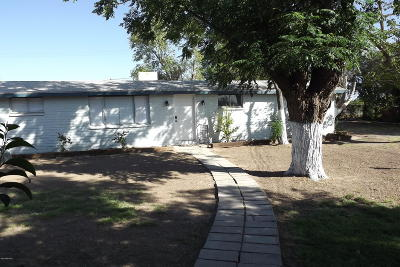 Tucson Single Family Home For Sale: 1641 E Lumber Street