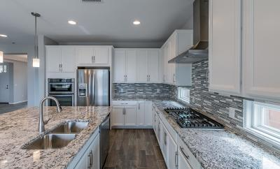 Pima County Single Family Home For Sale: 14145 N Golden Barrel Pass