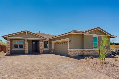 Pima County Single Family Home For Sale: 7251 W Secret Bluff Pass