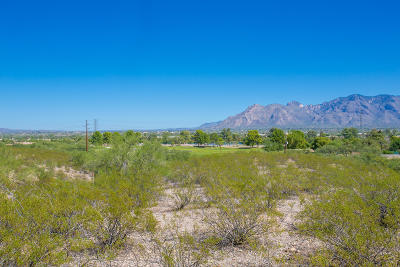 Tucson Residential Lots & Land For Sale: N Silverbell Road