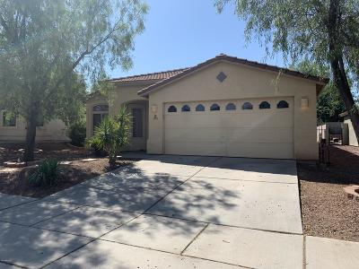 Tucson Single Family Home For Sale: 2229 W Painted Sunset Circle