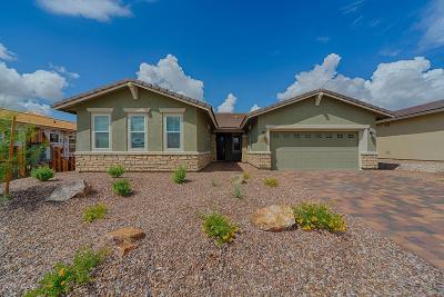 Marana Single Family Home For Sale: 14139 N Golden Barrel Ps Pass N