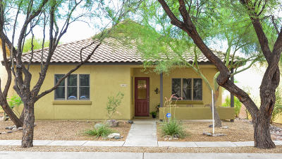 Pima County Single Family Home For Sale: 10373 E Loveless Gardner Lane