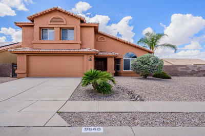 Tucson Single Family Home For Sale: 9640 E Paseo San Rosendo