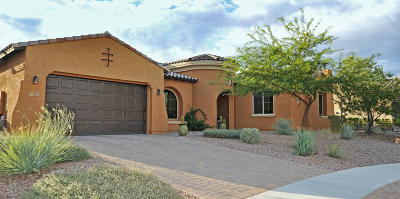 Oro Valley Single Family Home For Sale: 13483 N Alisma Court