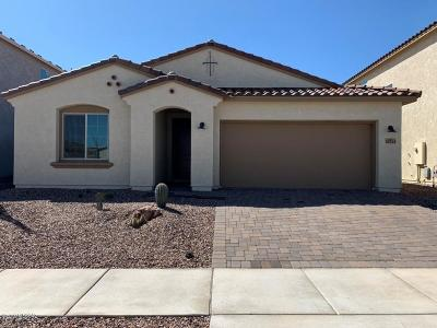 Tucson Single Family Home For Sale: 10244 E Encinas Trail