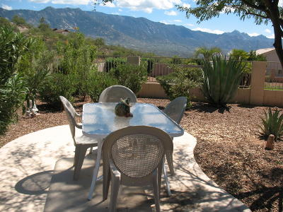 Tucson Single Family Home For Sale: 38165 S Desert Bluff Drive