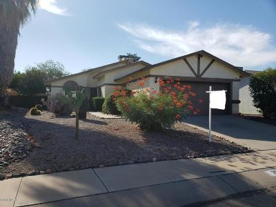Tucson Single Family Home For Sale: 2991 W Yorkshire Street
