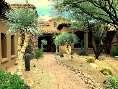 Pima County Single Family Home For Sale: 14601 N Shaded Stone Place