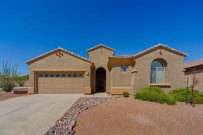Green Valley Single Family Home For Sale: 5820 S Painted Canyon Drive
