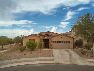 Pima County Single Family Home For Sale: 11725 N Sweet Orange Place