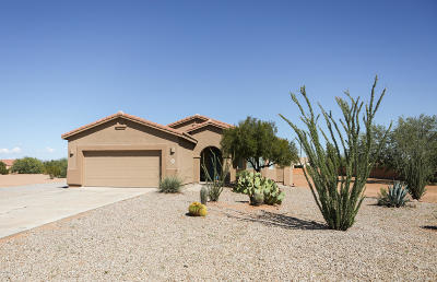 Marana Single Family Home For Sale: 10136 N Avra Vista Drive