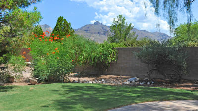 Tucson Single Family Home For Sale: 6529 N Shadow Bluff Drive