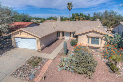 Tucson Single Family Home For Sale: 1520 W Highsmith Drive