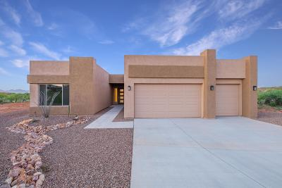 Vail Single Family Home For Sale: 10291 E Ocotillo Rim Trail