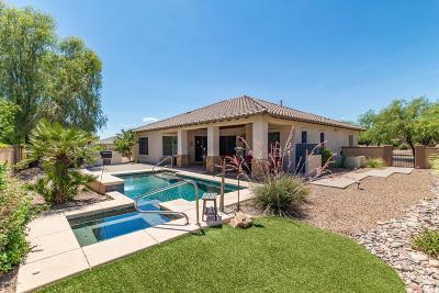 Sahuarita Single Family Home For Sale: 201 E Placita Haciendas Del Lago