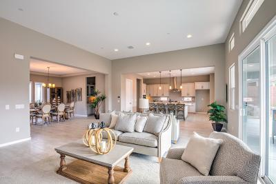 Marana Single Family Home For Sale: 7375 W Cactus Flower Pass