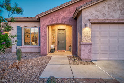 Oro Valley Single Family Home For Sale: 1195 W Doolan Drive