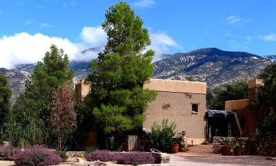 Vail Single Family Home For Sale: 6355 S Upper Valley Road