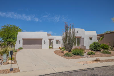 Oro Valley Single Family Home For Sale: 12691 N Rock Creek Road