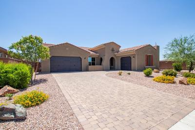 Oro Valley Single Family Home Active Contingent: 13446 N Trailing Indigo Court