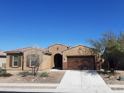 Oro Valley Single Family Home For Sale: 2288 W Capricorn Street