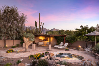Oro Valley Single Family Home For Sale: 75 E Beekeeper Trail