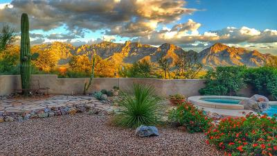 Oro Valley Single Family Home Active Contingent: 487 W Coyote Moon Place