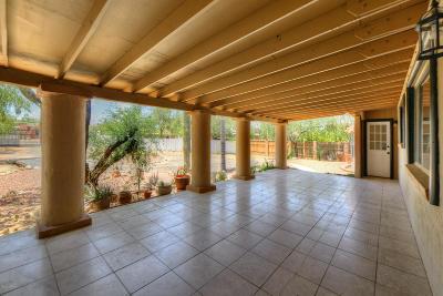 Tucson Single Family Home For Sale: 1540 W Daybreak Circle