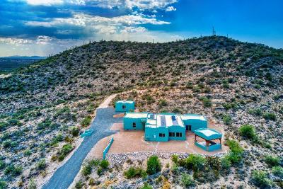 Vail Single Family Home For Sale: 15540 E Colossal Cave Road