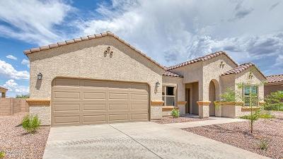 Sahuarita Single Family Home For Sale: 1074 S Valley Meadow Lane W
