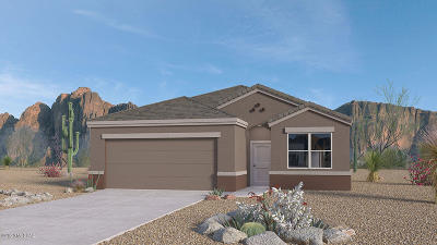 Marana Single Family Home For Sale: 9156 W Senita Bloom Way