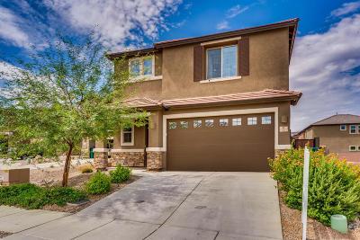 Sahuarita Single Family Home For Sale: 33 E Placita Fara