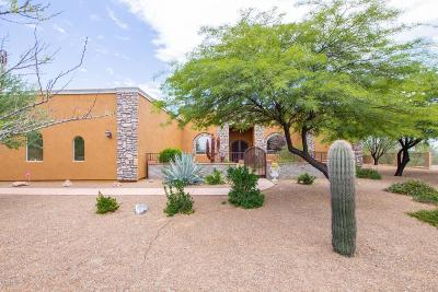 Oro Valley Single Family Home For Sale: 10390 N Derrio Canyon Place