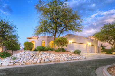 Oro Valley Single Family Home For Sale: 10180 N Alder Spring Drive