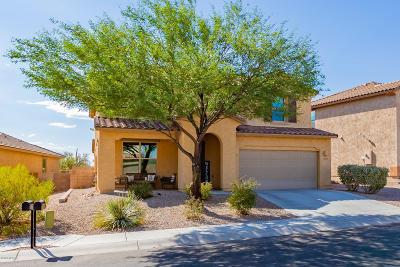 Marana Single Family Home For Sale: 12543 N Summer Wind Drive
