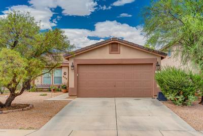 Sahuarita Single Family Home Active Contingent: 323 E Mountain Alder Street