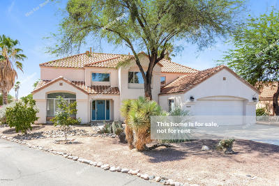 Tucson Single Family Home For Sale: 10704 N Eagle Eye Place