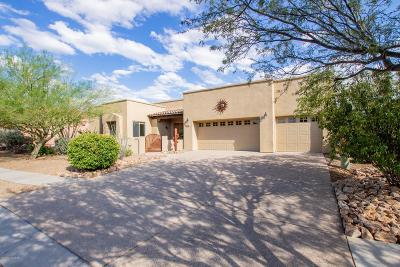 Vail Single Family Home Active Contingent: 16945 S Vanilla Orchid Drive