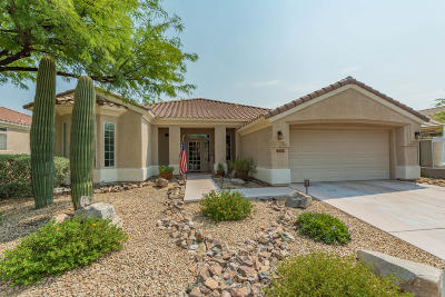 Marana Single Family Home For Sale: 13774 N Heritage Canyon Drive