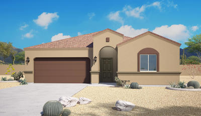 Marana Single Family Home For Sale: 9963 N Ruby Range Trail
