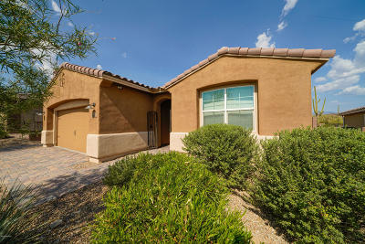 Marana Single Family Home For Sale: 14054 N Silverleaf Lane